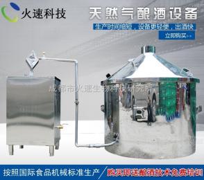 kj-100-BJ天然氣蒸汽式釀酒設備