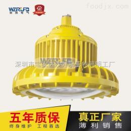RLB155納米車間專用防爆燈,100W防爆節能燈廠家