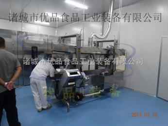 YP-23全自動油炸流水線