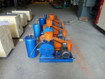 RTSR厂家直销干式真空泵|三叶罗茨风机