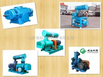 RTSR厂家直供鲁式真空泵|山东瑞拓