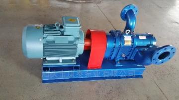 污水處理行業WZB80污泥轉子泵 旋轉活塞泵 正反轉凸輪泵