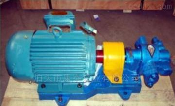 2CY2/0.6供油单元配套船用燃油齿轮泵 燃油供给泵