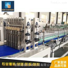 瓶裝礦泉水生產線設備