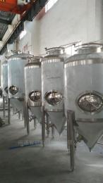 ZS-BET-1啤酒储酒罐 红酒储罐