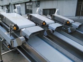 ZS-ss-11食品輸送帶  帶式輸送機