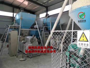 LY120-D120型預糊化淀粉生產設備
