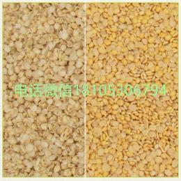 6FT-PB8小型干法大豆脱皮破碎设备(两瓣豆仁)