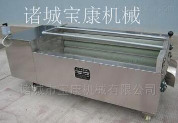 胡萝卜毛辊清洗机设备