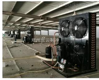 美国艾默生涡旋压缩机组
