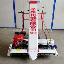ZD-170高效率汽油粮食装袋机