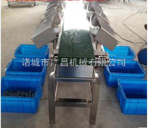 GCFX重量分級機在線稱重機面膜檢重機