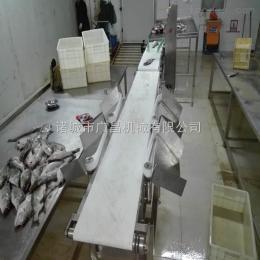 GCFX-300重量分級機檢重秤鱸魚檢重秤