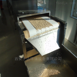 SD-20KW-4X干果炒货机松子熟化烘焙设备