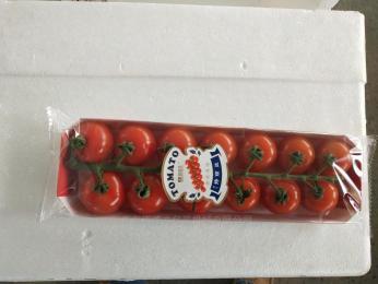 Medlon590Aw果菜包装机