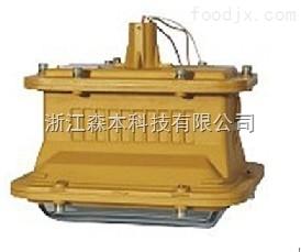 SBD1101-YQL50免維護無極燈SBD1101-YQL50防爆燈