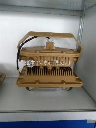 SBF6101-YQL50SBF6101-YQL50免維護節能防水防塵防腐燈