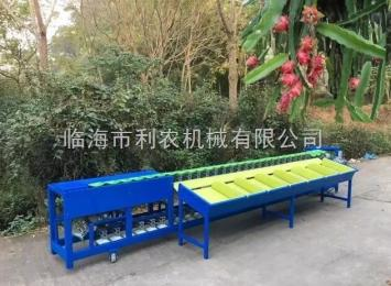 LN-8500供应利农牌小型火龙果分选设备,机械称重式人工上果火龙果等级分选