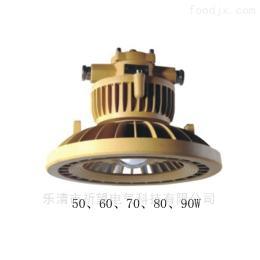 LED-20W防爆免维 明灯QWD110-20W