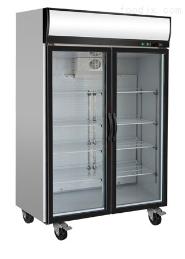 双门冷冻展示柜