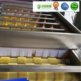 YGMQ-1土豆 芋头脱皮  羊蹄 猪耳朵清洗毛辊清洗机