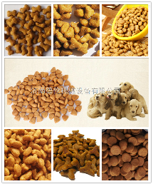 DL-65寵物食品生產線