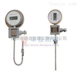 BNZD防爆型数显热电阻温度仪表