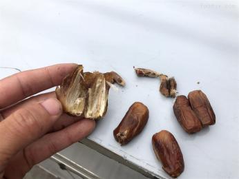 A出口中東地區的椰棗去核設備