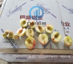 208型大型桃去核切瓣機2瓣4瓣6瓣