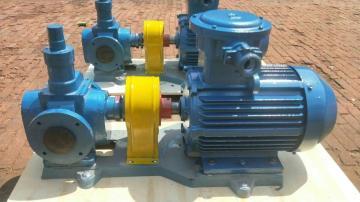 齐全YCB系列圆弧齿轮泵不锈钢齿轮油泵