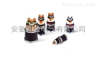 BPYJVP1P2BPYJVP1P2变频◆器专用电力电缆 青盛电线电�缆
