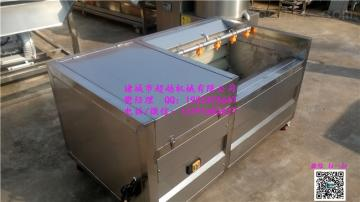CY1500毛輥清洗脫皮機生姜清洗機價格超越專業制造