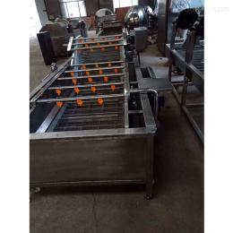 FS-800氣泡果蔬清洗機選山東諸城富森精工機械