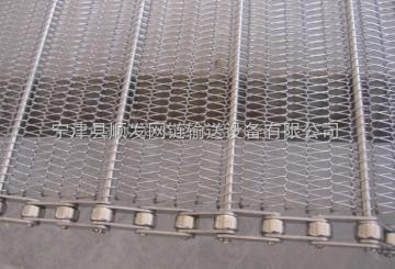 wd-01不銹鋼網帶