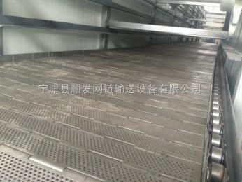 LB-01蔬菜清洗机输送链板