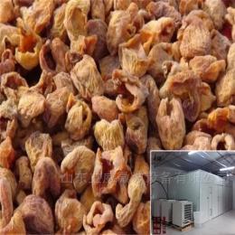 7p杏子空气能烘房济南干燥设备厂家