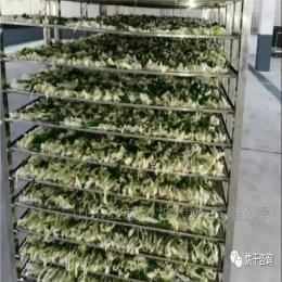 7P蔬菜烘干機 濟南熱泵設備廠家