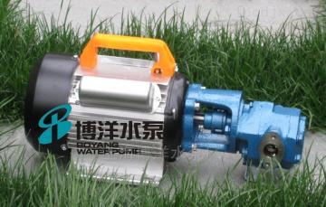 WCB型WCB型手提式油泵