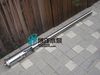 FY-1.2TFY-1.2T型氣動不銹鋼漿料泵,插桶泵