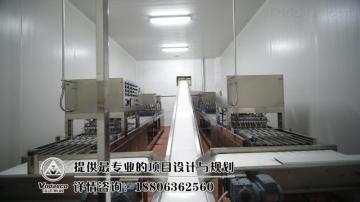 小型血豆腐加工設備,小型鴨血生產線