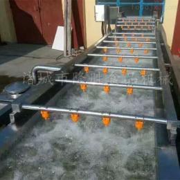 山楂清洗机,隆胜机械供应山楂加工配套设备