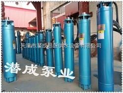 250QJ140-270-185KW臥式潛水泵電機