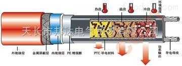 ZWK2-PF进口电伴热带产品DXW-PF-14mm石油管道电伴热带