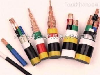 BPYJVP2/22 BPYJVPBPYJVP 变频器用电力电缆BPYJVP2/22 电线电缆