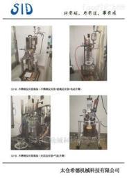 2L中試型成套反應器
