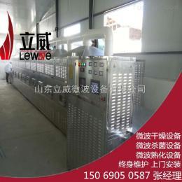 环保型外墙保温板微波干燥烘干设备