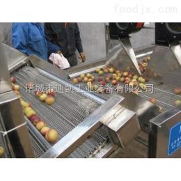 苹果大枣清洗机 包装袋清洗设备 果蔬气泡清洗机