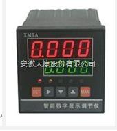 供应天康XMZT-495数字式显示调节