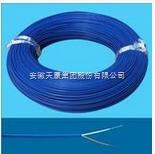 ia-EX-GS-VPVR补偿电缆