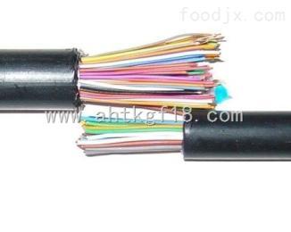 HYA-10*2*0.5通信电缆